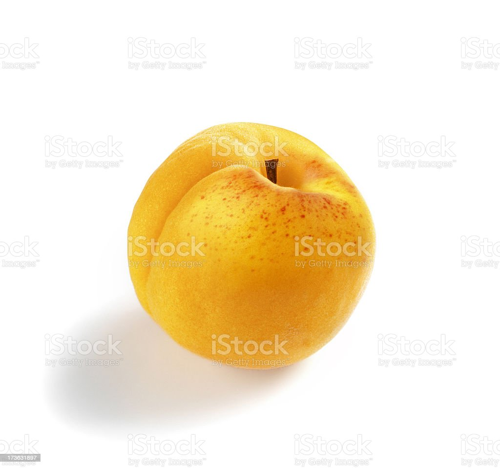 Apricot single royalty-free stock photo