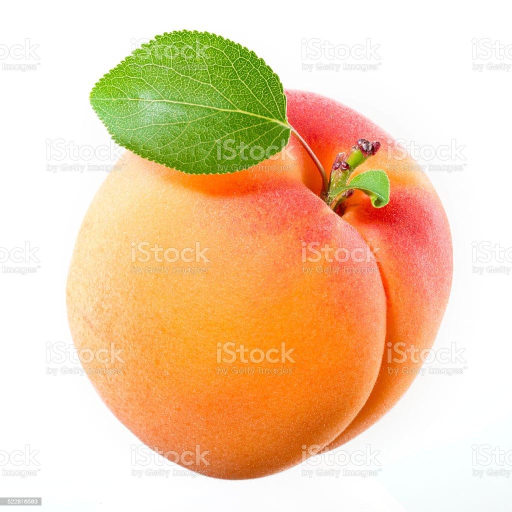 Aprikosen mit Blätter auf weißem Hintergrund. – Foto