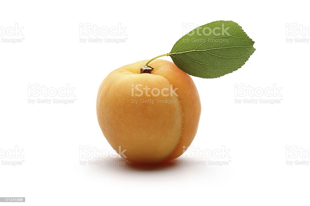 Apricot with leaves stock photo