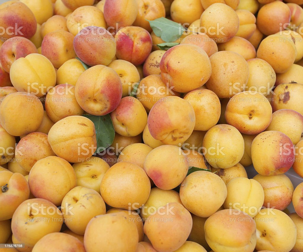 Apricots background royalty-free stock photo
