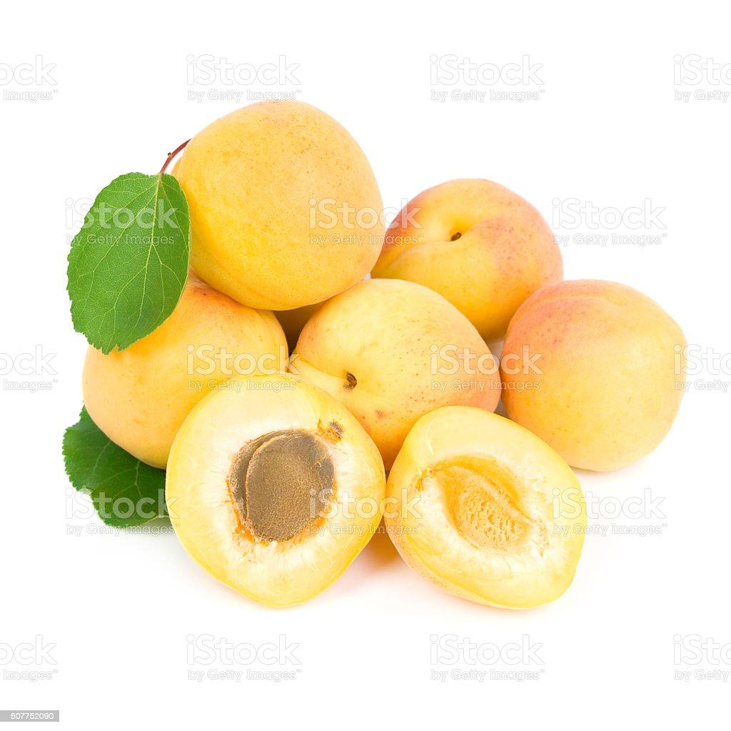 Apricots. stock photo