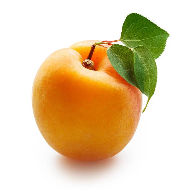 aprikosen mit blätter, isoliert auf weiss - aprikose stock-fotos und bilder