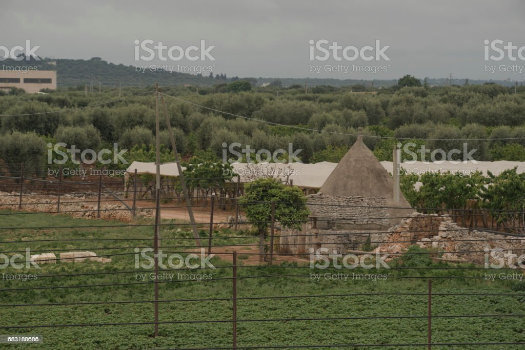 Apulia, The Murgia, the Apulian countryside. Italy..Wheat fields and gray sky. Green and yellow fields, hills. royalty-free 스톡 사진