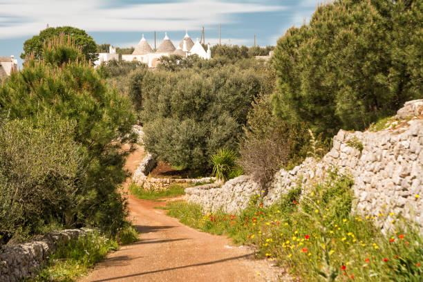 Apulische Landstraße mit Steinmauern und Trulli im Hintergrund – Foto