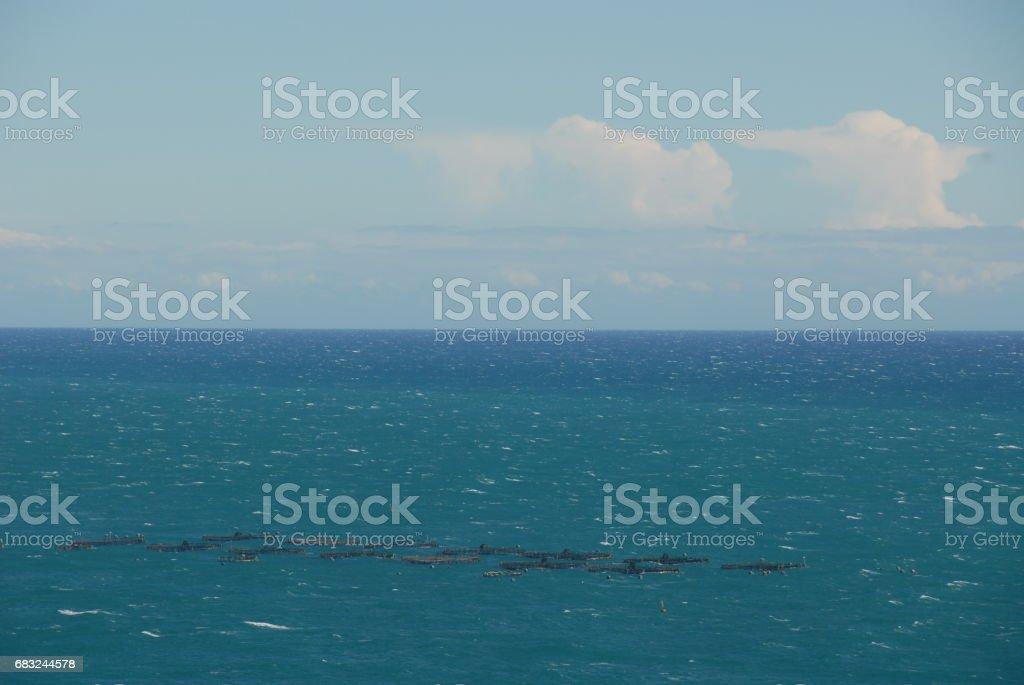 Aquakultur im Mittelmeer in Spanien 免版稅 stock photo