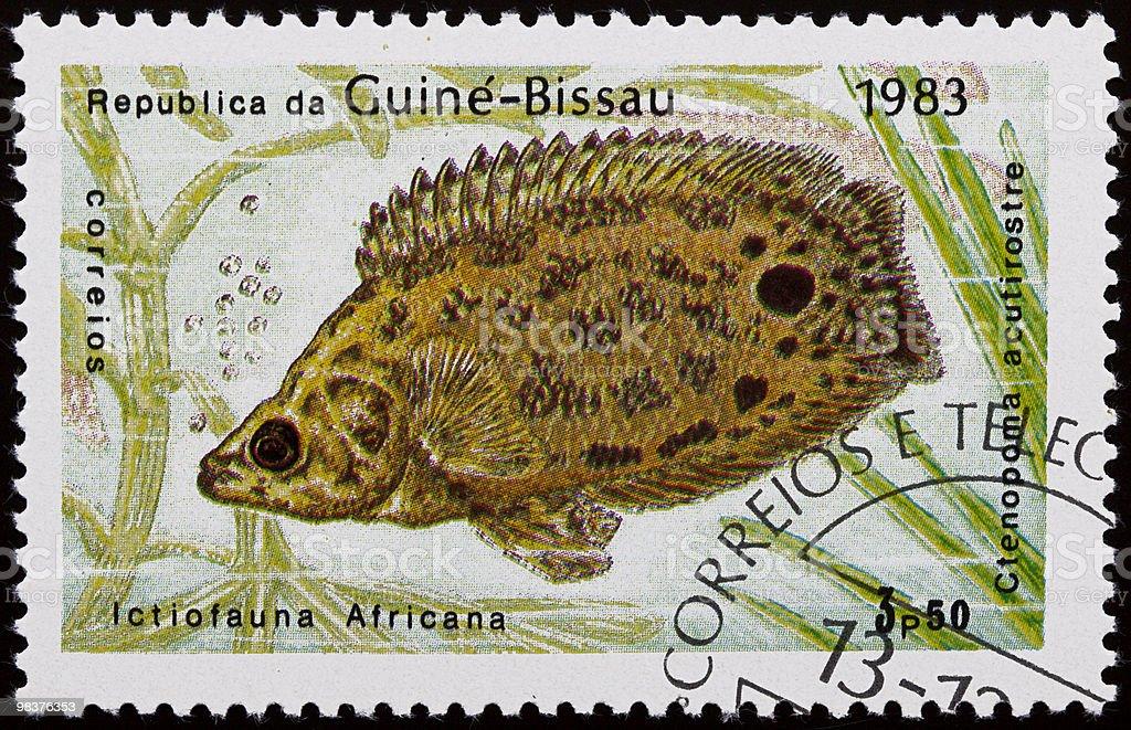 Acquario con pesci stamp foto stock royalty-free