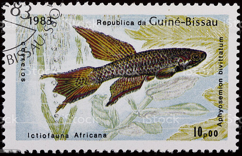 Aquarium fish stamp royalty-free stock photo