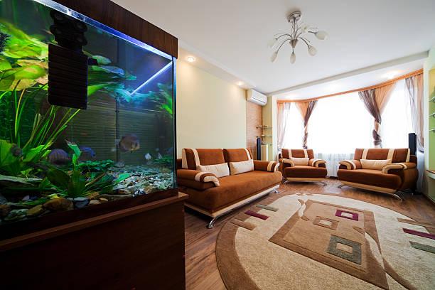 aquarium in a room - home aquarium stock pictures, royalty-free photos & images