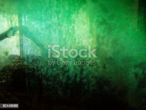 istock aquarium 92449089