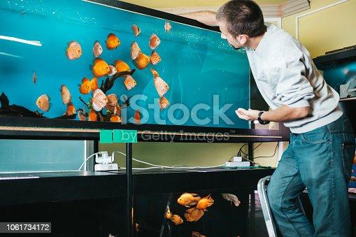 istock Aquarium shop 1061734172