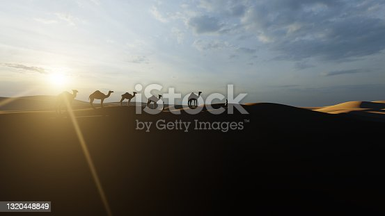 Arab man and camels in the desert against beautiful sun