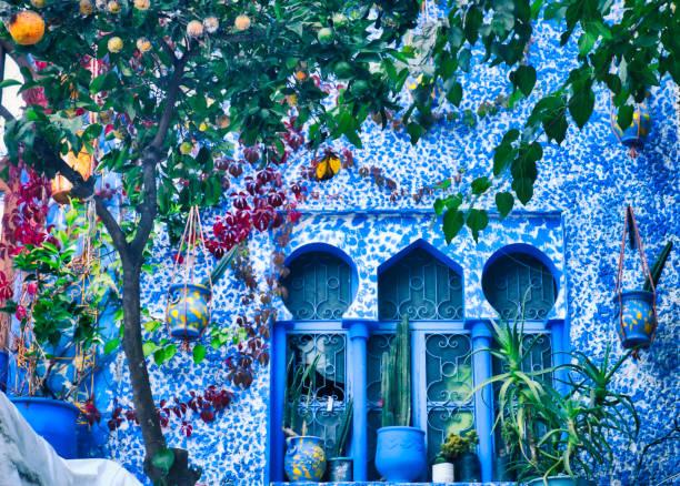 fönster i arabisk stil inredda med krukor och en tangerine träd. bild tagen i chefchaouen, en vacker by i norra marocko - kasbah bildbanksfoton och bilder