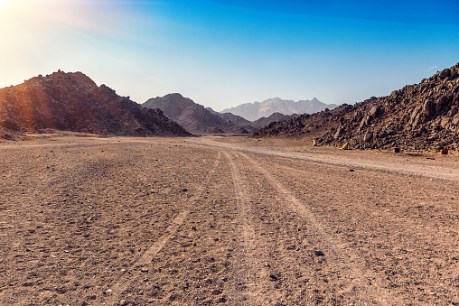 tracks from the car in Arabian desert in Egypt