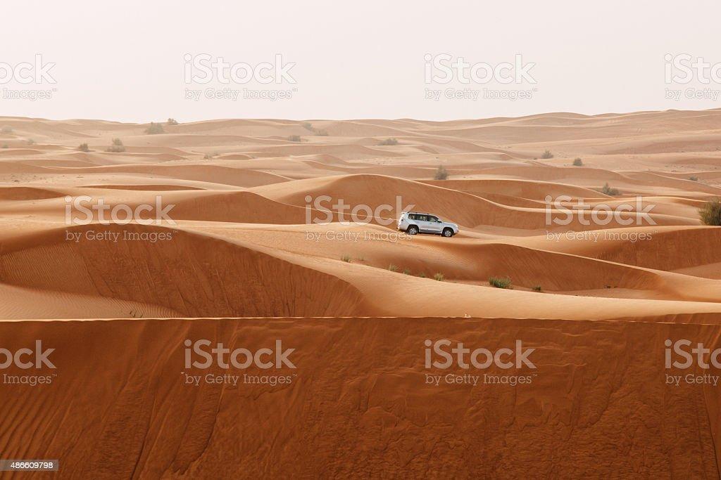 Arabische Wüste – Foto