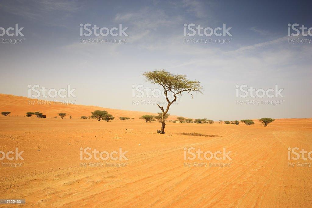 Arabian Sultanate Oman Wahiba Sands Desert Sand Dunes royalty-free stock photo