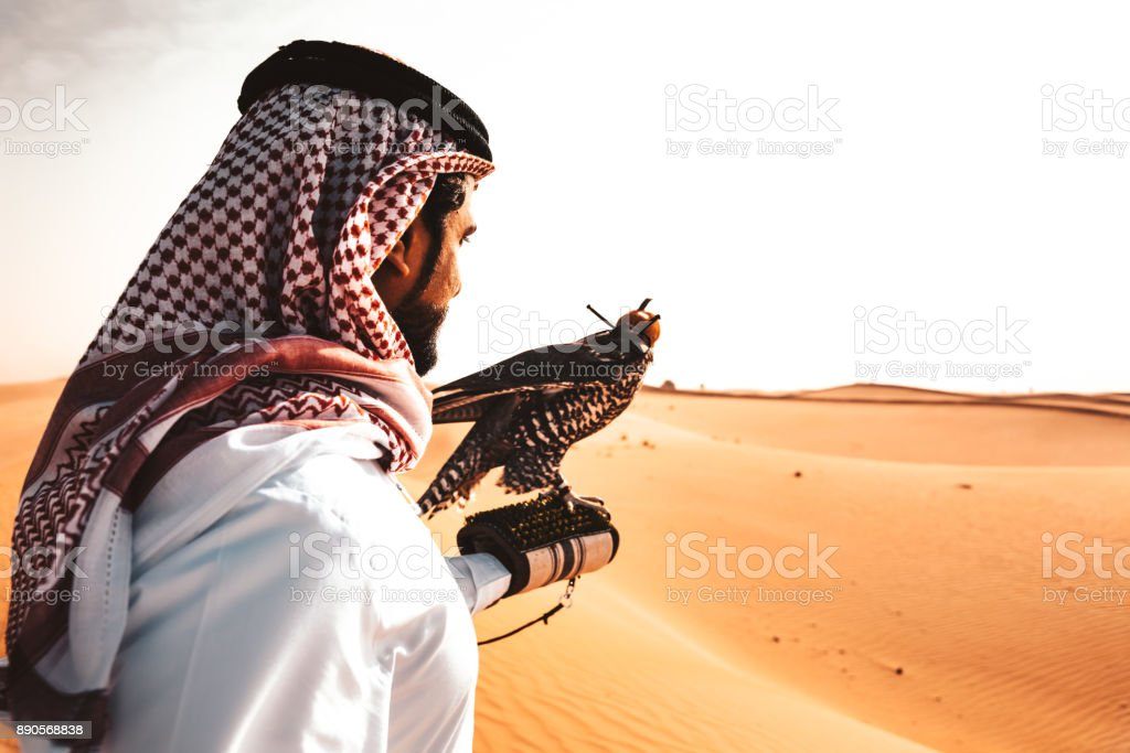arabic man in the desert with a falcon stock photo