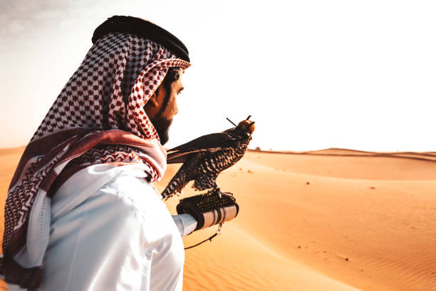 arabic man in the desert with a falcon - oman стоковые фото и изображения