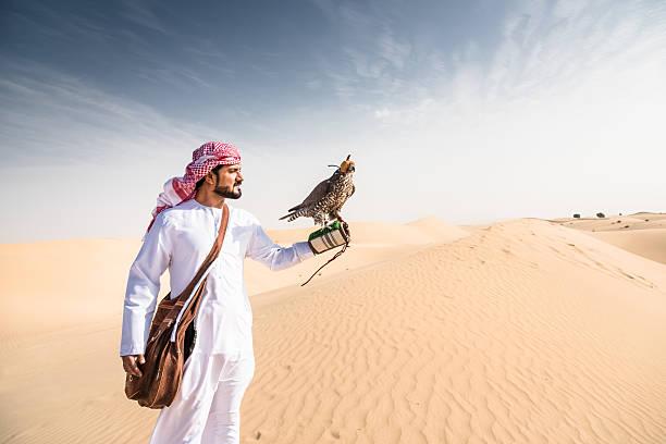 arabic sheik on the desert holding a falcon - falcon bird stock photos and pictures