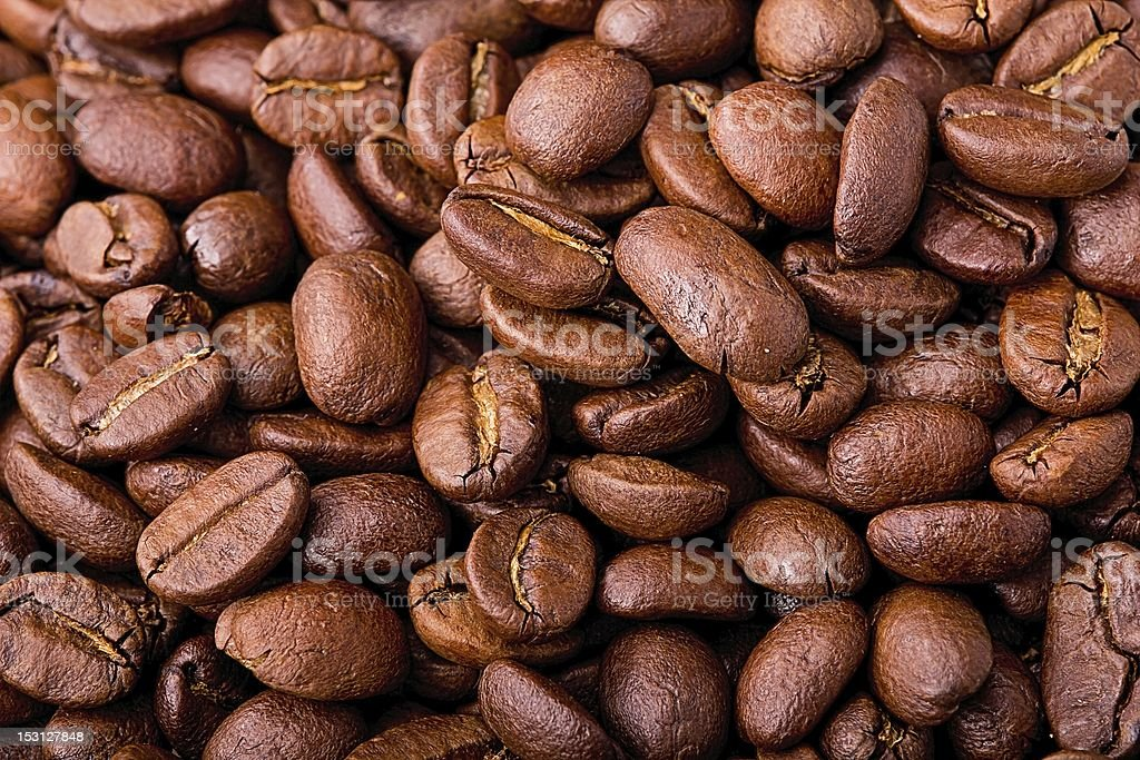 Arabica Bohnen stock photo