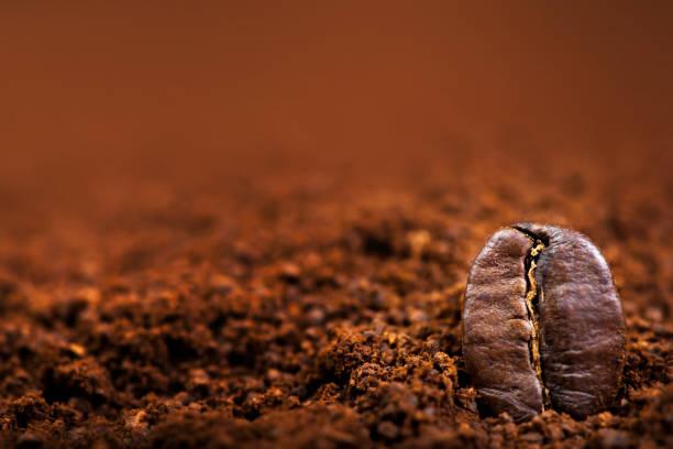 arabica kaffee bohnen makro auf braunem hintergrund schließen sich, makro - kaffeepulver stock-fotos und bilder