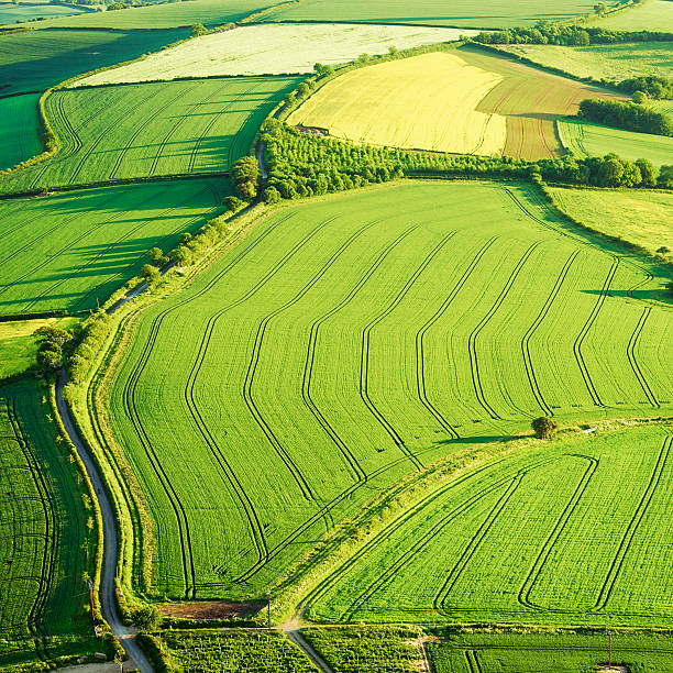 Arable fields from the air Square format Aerial view of cultivated fields in Somerset, England. somerset england stock pictures, royalty-free photos & images