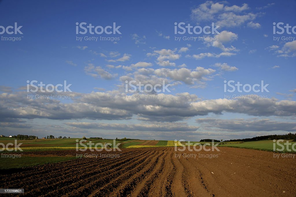 Arable land in spring royalty-free stock photo
