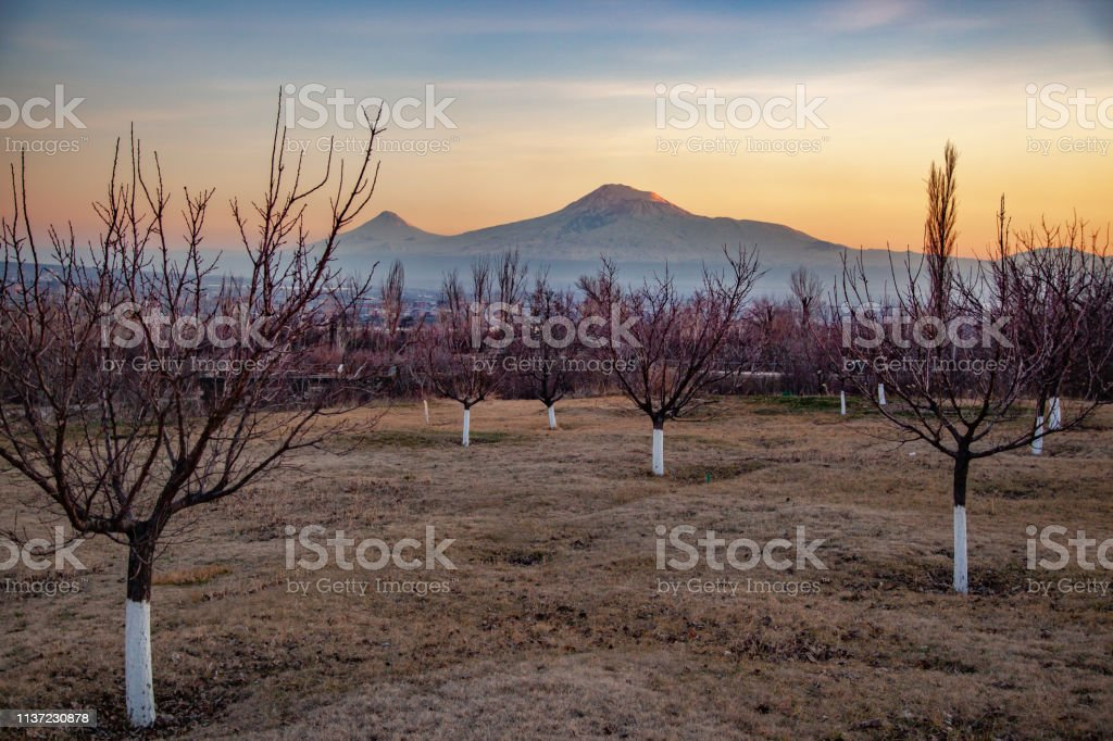ararat mountain at the beautiful sunset stock photo