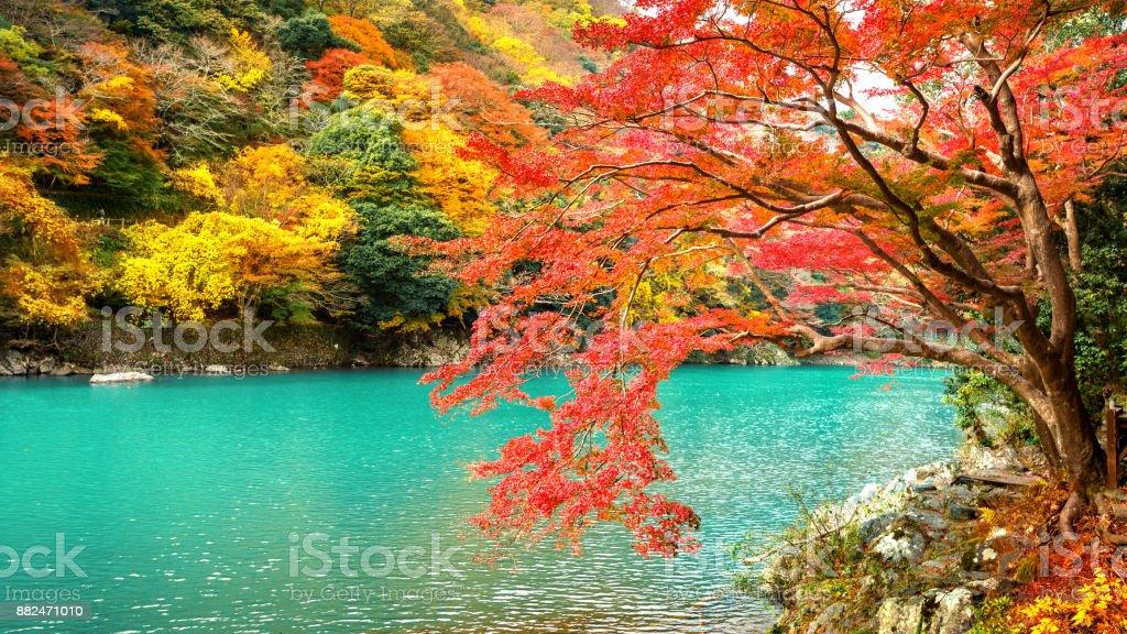Arashiyama in autumn season along the river in Kyoto, Japan. - foto stock