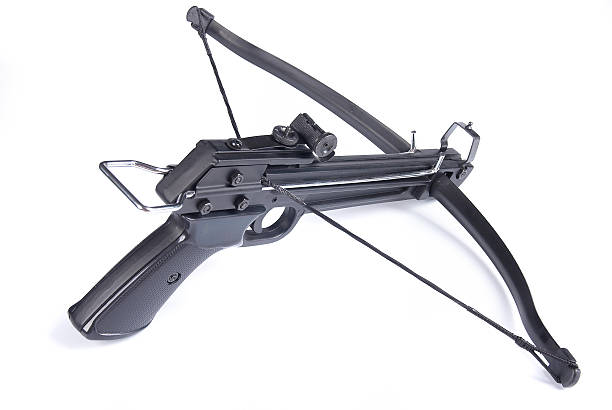 arbalest - crossbow stock pictures, royalty-free photos & images