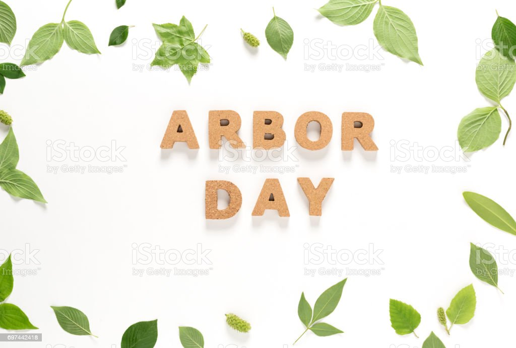 Arbor Day text with green leaves top view stock photo