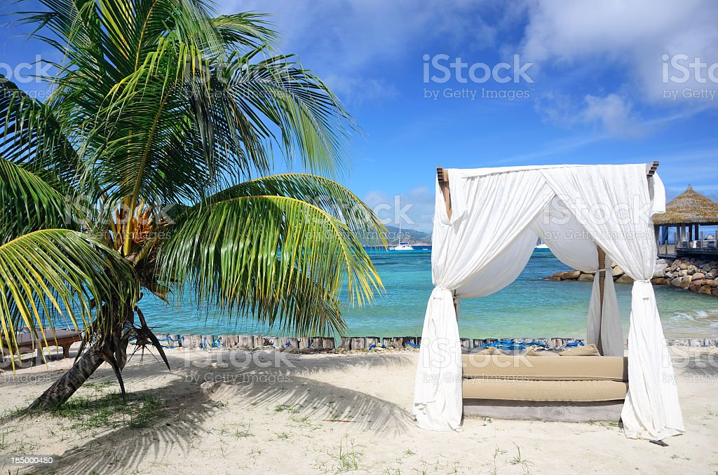 Arbor on tropical beach stock photo