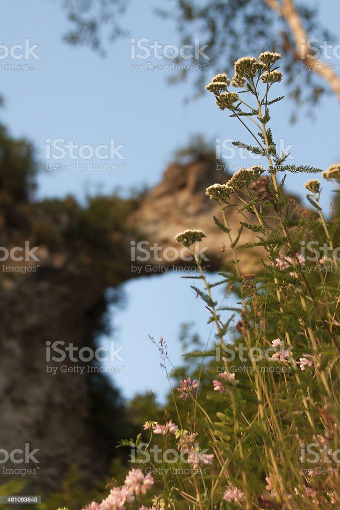 Arch Rock stock photo