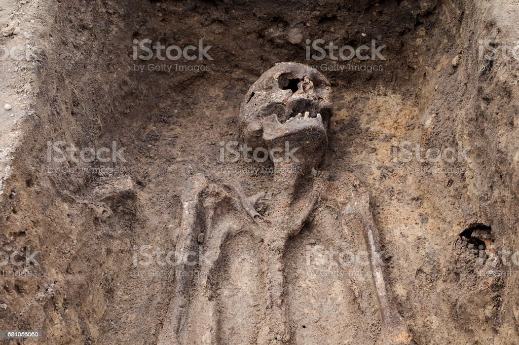 Archaeological excavation with skeletons stock photo