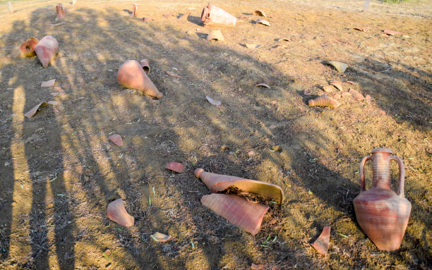 Archaeological excavations. Broken ancient amphorae on the ground. Archaeological excavations. Broken ancient amphorae on the ground fossilized pitch stock pictures, royalty-free photos & images