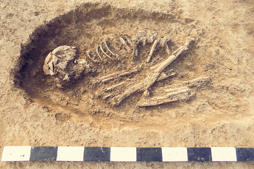 istock Archaeological excavations man and finds (bones of a skeleton in a human burial),  working tool, ruler, a detail of ancient research, prehistory. 1095592656