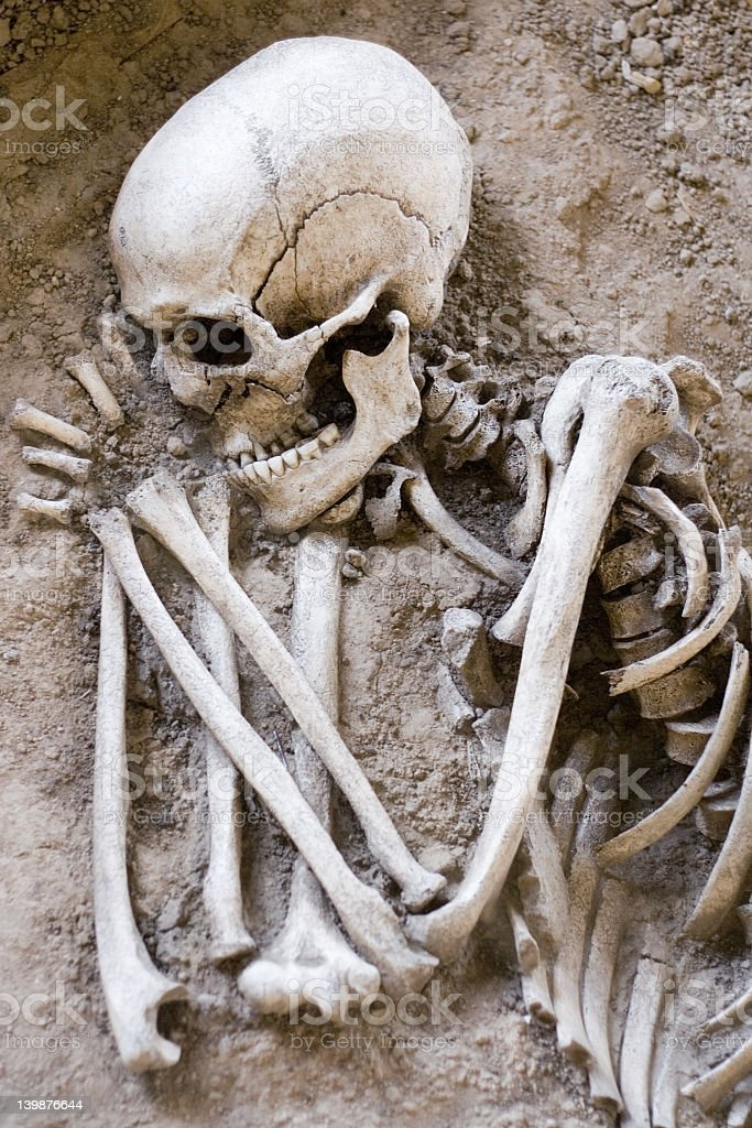 Archaeological find of skeleton in sleeping position stock photo