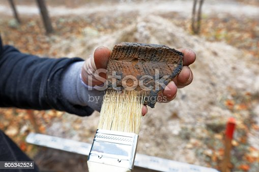 istock Archaeological finding during the field expedition 805342524