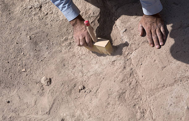 Archaeologist cleaning the soil surface by a brush stock photo