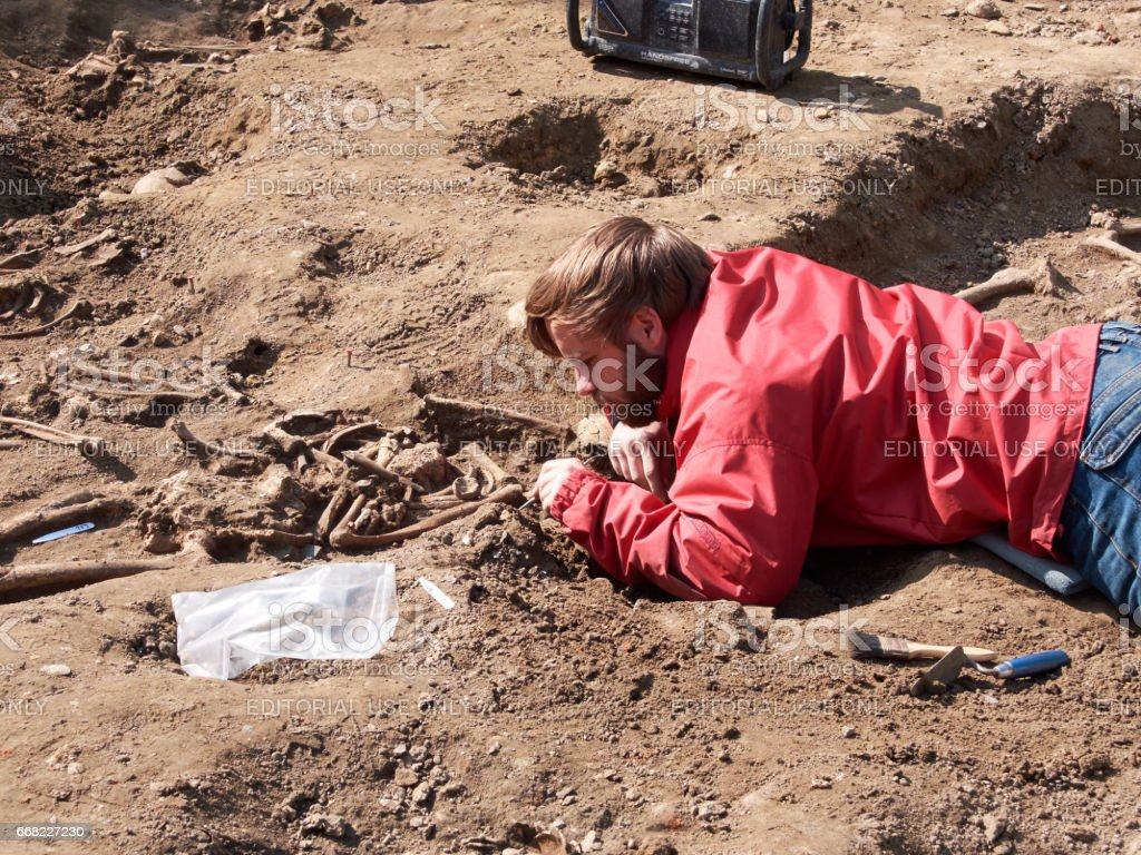 Halle, Belgium - April 7, 2017: Archaeologist dig up human bones several times hundred-year-old in the center of the city. stock photo