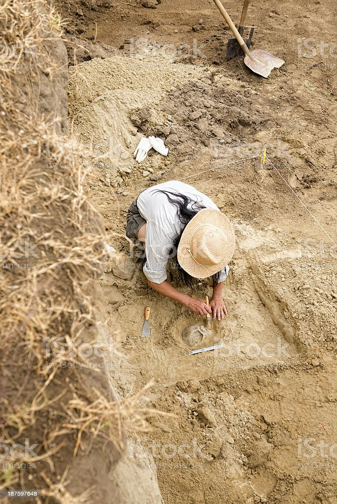Archaeologist recovering human remains from ancient grave stock photo