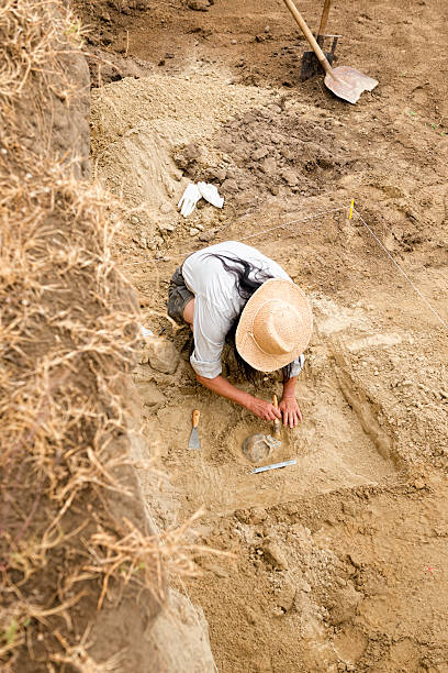 Archaeologist recovering human remains from ancient grave Archaeologist recovering human remains from ancient grave archaeology stock pictures, royalty-free photos & images