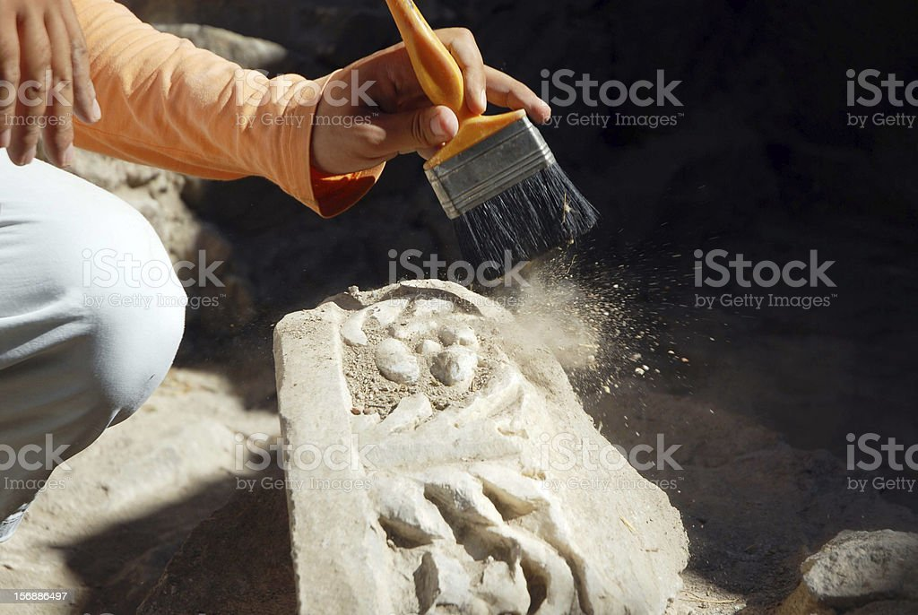 Archaeology graduate student brushing a fossil stock photo