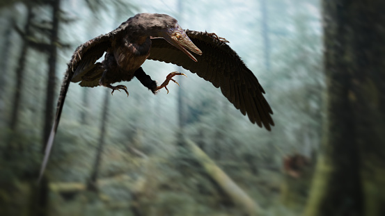 extinct prehistoric animal,  lived in the Late Jurassic Europe