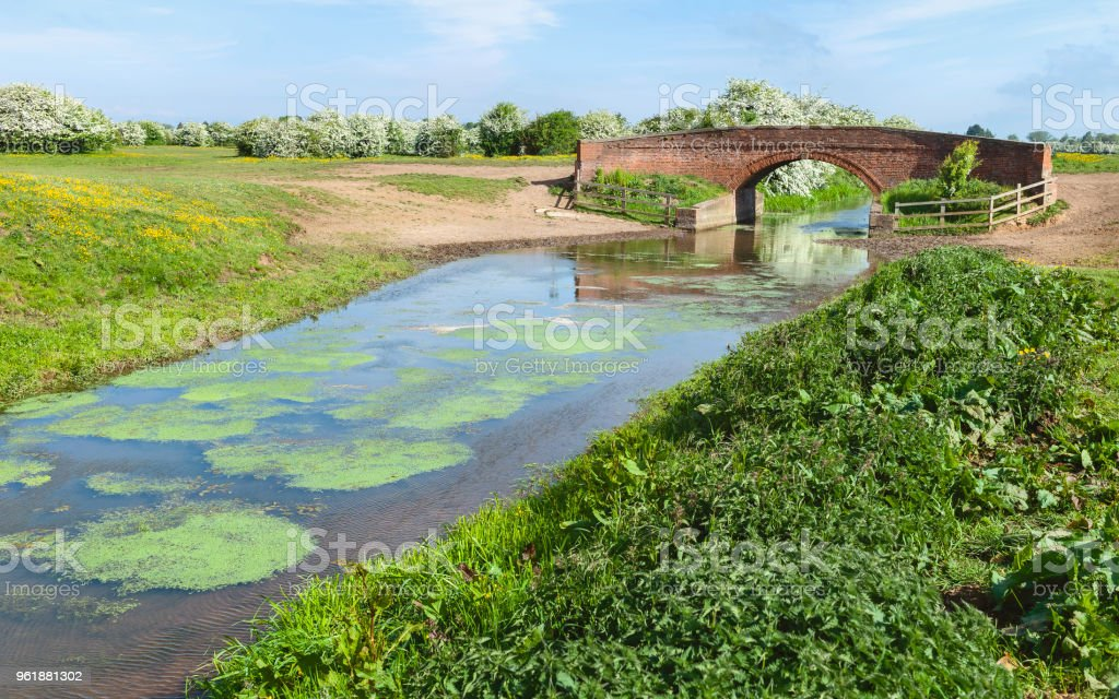 Arched bridge and canal and vegetation, Beverley, Yorkshire, UK. stock photo
