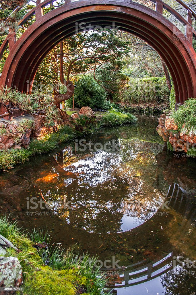 Arched Drum Bridge in Japanese Tea Garden stock photo