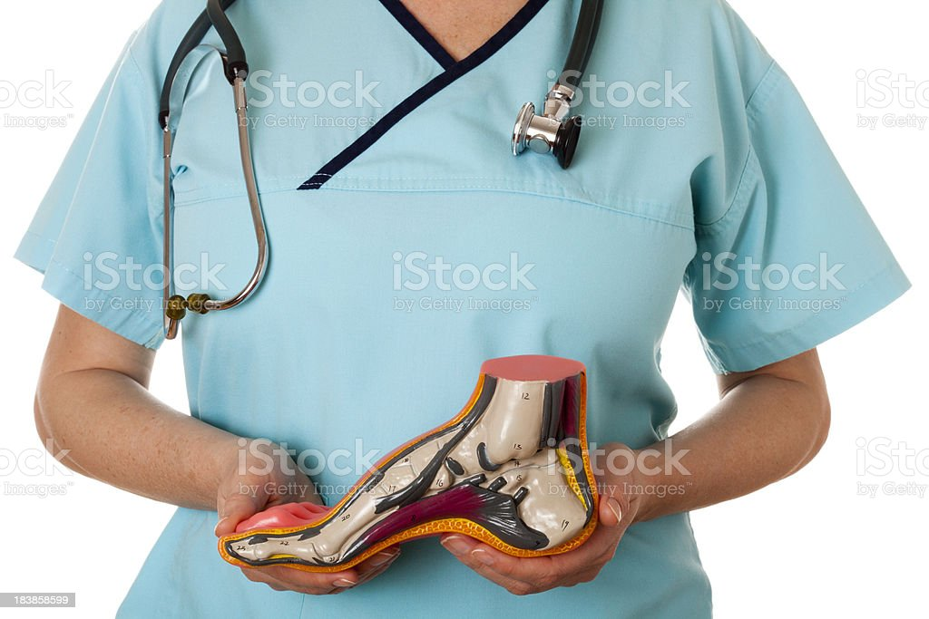 Arched foot stock photo