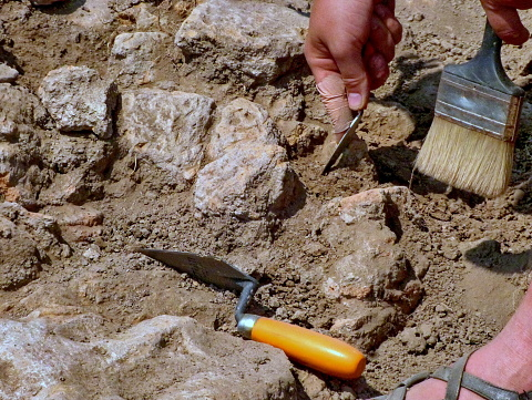 istock Archeologist working on site, hand and tool 859893418