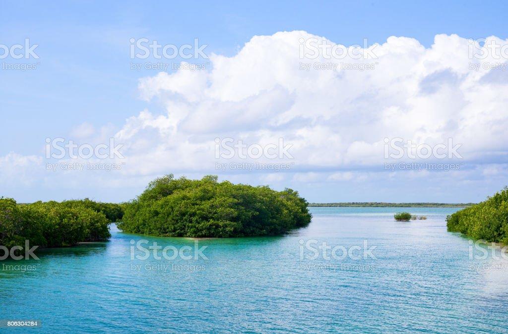 Archeology and nature of the Yukatan peninsula stock photo