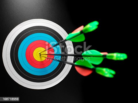 istock Archery Target of Success 168718559