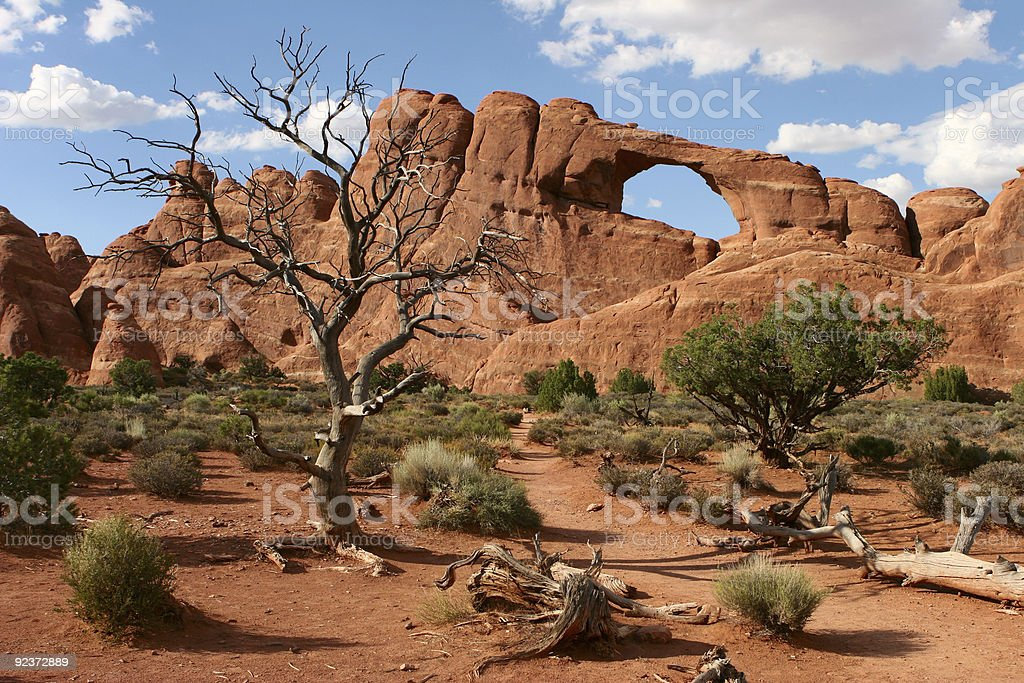 Arches in the Desert royalty-free stock photo